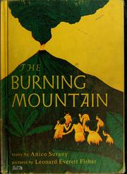 Cover of: The burning mountain