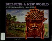 Cover of: Building a new world