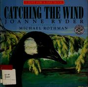 Cover of: Catching the wind