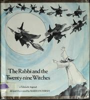 Cover of: The rabbi and the twenty-nine witches