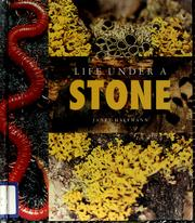 Cover of: Life under a stone