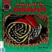 Cover of: Insects of the rain forest