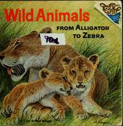 Cover of: Wild animals: from alligator to zebra | Arthur Singer