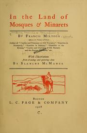 Cover of: In the land of mosques & minarets