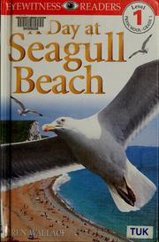 Cover of: A day at Seagull beach