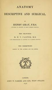 Cover of: Anatomy : descriptive and surgical by Henry Gray