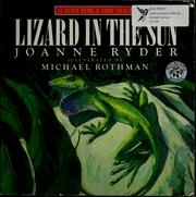 Cover of: Lizard in the sun