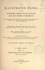 Cover of: An illustrated flora of the northern United States, Canada and the British possessions