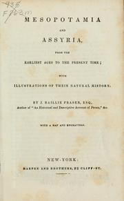 Cover of: Mesopotamia and Assyria
