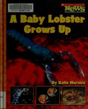 Cover of: A baby lobster grows up | Katie Marsico