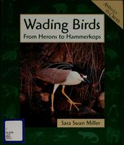 Cover of: Wading birds