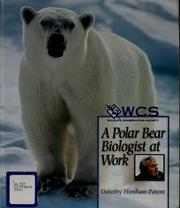 Cover of: A polar bear biologist at work | Dorothy Hinshaw Patent