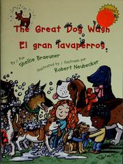 Cover of: The great dog wash = | Shellie Braeuner