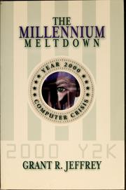 Cover of: The millennium meltdown