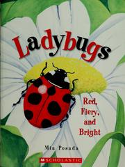 Cover of: Ladybugs | Mia Posada