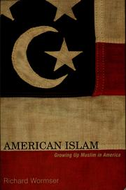 Cover of: American Islam