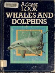Cover of: A closer look at whales and dolphins | Stonehouse, Bernard.