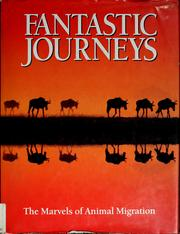 Cover of: Fantastic journeys