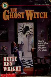 Cover of: The ghost witch