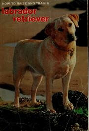 Cover of: How to raise and train a labrador retriever | Stan Henschel