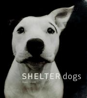 Cover of: Shelter dogs