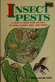Cover of: Insect Pests | Zim and Fichter
