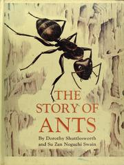 Cover of: The story of ants