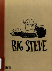 Cover of: Big Steve