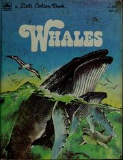 Cover of: Whales: friendly dolphins and mighty giants of the sea