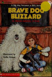 Cover of: Brave dog Blizzard