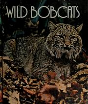 Cover of: Wild bobcats