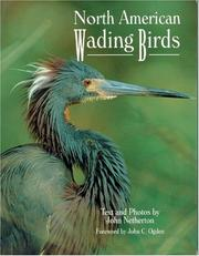 Cover of: North American wading birds