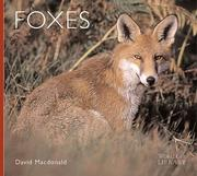 Cover of: Foxes