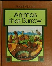 Animals that burrow by Dean Morris
