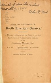 Cover of: Index to the names of North American grasses