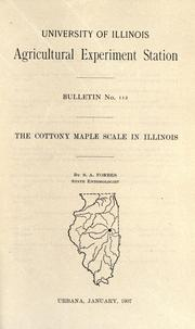 Cover of: The cottony maple scale in Illinois