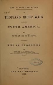 Cover of: The pampas and the Andes