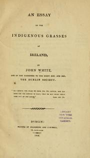 Cover of: An essay on the indigenous grasses of Ireland | John White