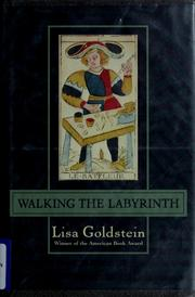 Cover of: Walking the labyrinth | Lisa Goldstein