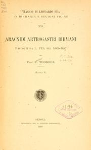 Cover of: Aracnidi artrogastri Birmani