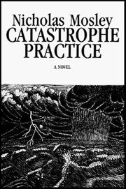 Cover of: Catastrophe practice