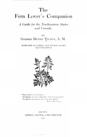 Cover of: The fern lover