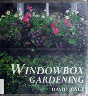 Windowbox gardening by David Joyce