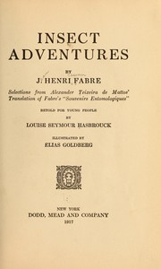 Cover of: Insect adventures