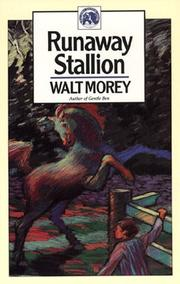 Cover of: Runaway Stallion (Walter Morey Adventure Library)
