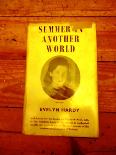 Summer in another world by Evelyn Hardy