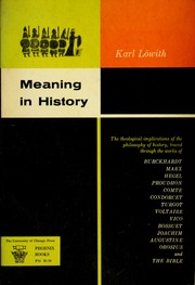 Cover of: Meaning in history