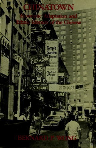 Chinatown, economic adaptation and ethnic identity of the Chinese