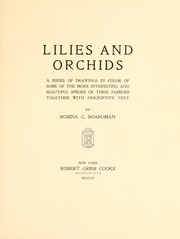 Cover of: Lilies and orchids | Rosina Cox Boardman