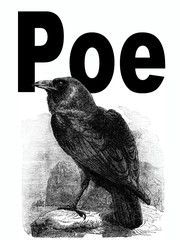 Cover of: The works of Edgar Allan Poe